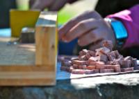 Laboratorio didattico sul mosaico